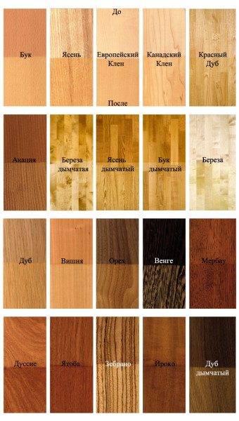 Породы древесины.
