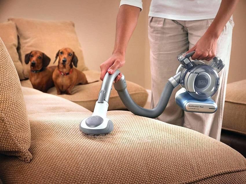 Рейтинг роботов-пылесосов для уборки шерсти животных: какой пылесос для сбора шерсти домашних животных лучше?