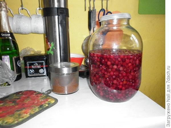 Как хранить чернику в домашних условиях. хранение свежих ягод, варианты длительного хранения на зиму - onwomen.ru