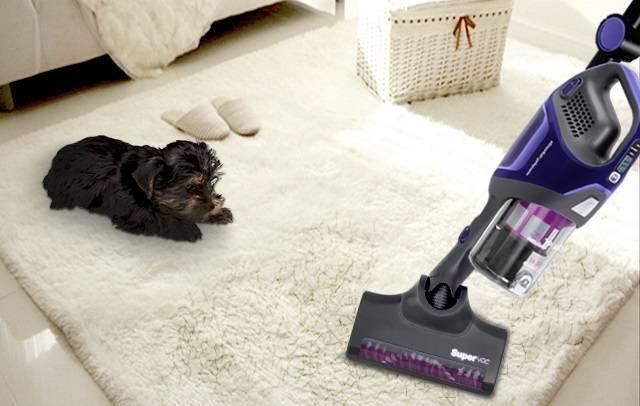 Как правильно выбрать пылесос для квартиры с животными