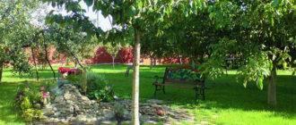 Подовый сад на участке