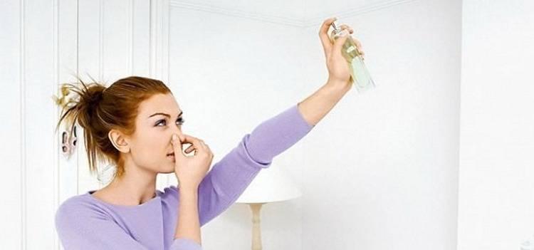 Простые способы избавления от запаха сырости и плесени на одежде