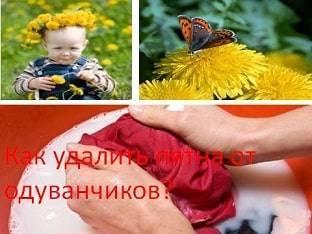 Как вывести пятна от цветов и травы с одежды