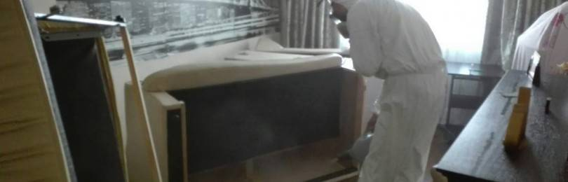 Сдохла мышь в стене как избавиться от запаха