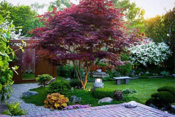 Как выбрать правильное дерево для сада