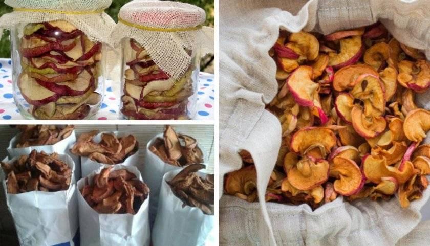Как правильно хранить сушеные яблоки в домашних условиях?