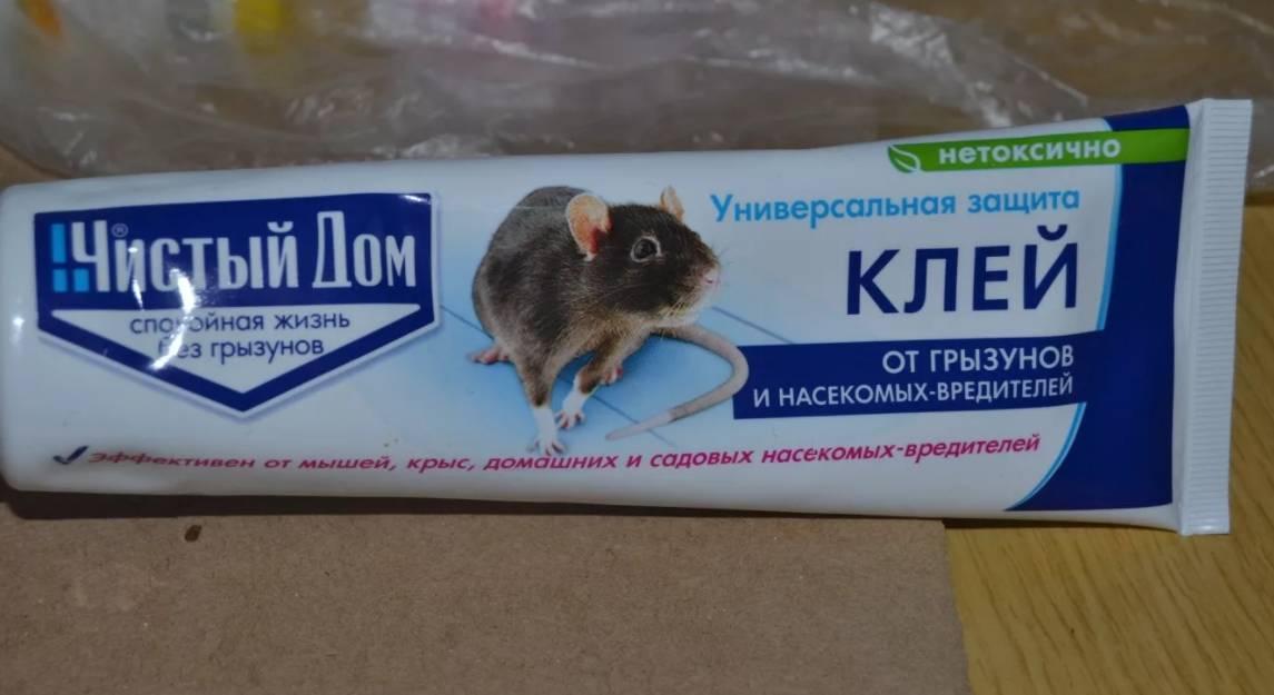клеевые картинки от мышей трудно встретить девушку