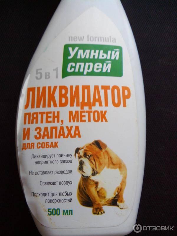 Как убрать запах собаки в квартире?