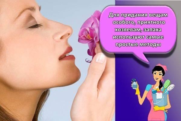 Как избавиться от запаха в шкафу с одеждой: лучшие способы