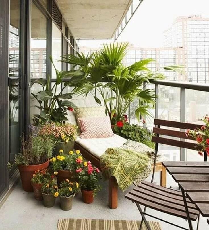 пополнения семьи зимний сад на балконе своими руками фото знаете толк