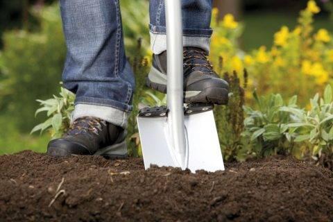 Многофункциональные лопаты: популярные модели и советы по выбору