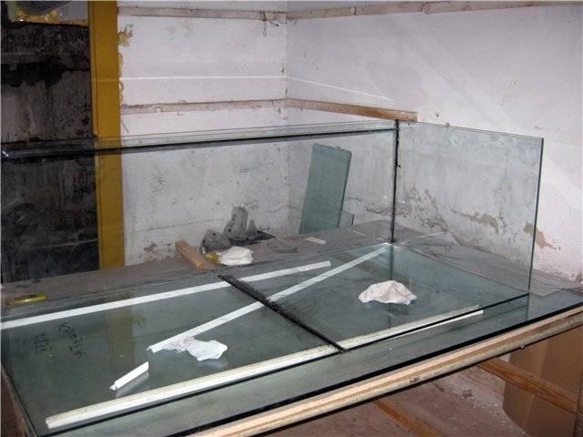 Виды аквариумных сомов фото и описание вкусно