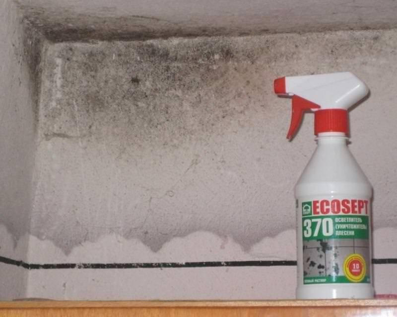 Как избавиться от сырости в доме и квартире