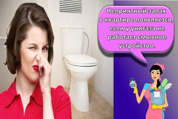 Чем убрать и как быстро избавиться от запаха в квартире в домашних условиях