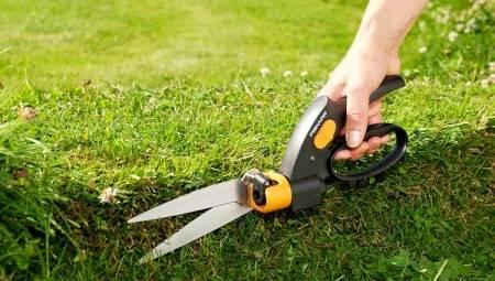 Анкета «правила техники безопасности при работе с ножницами и иглами» для обучающихся 4 класса