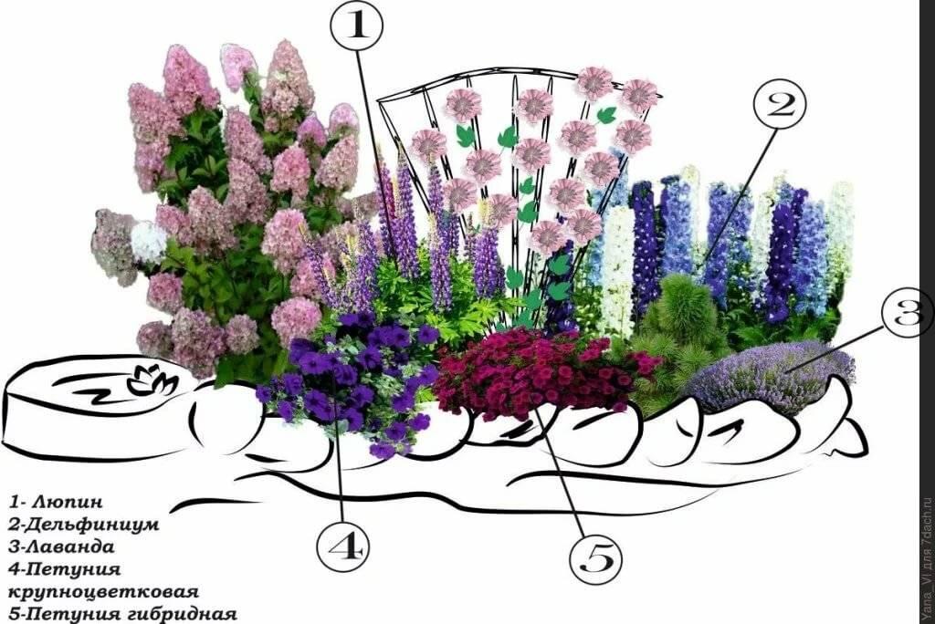 картинки схем цветников лет прошло того