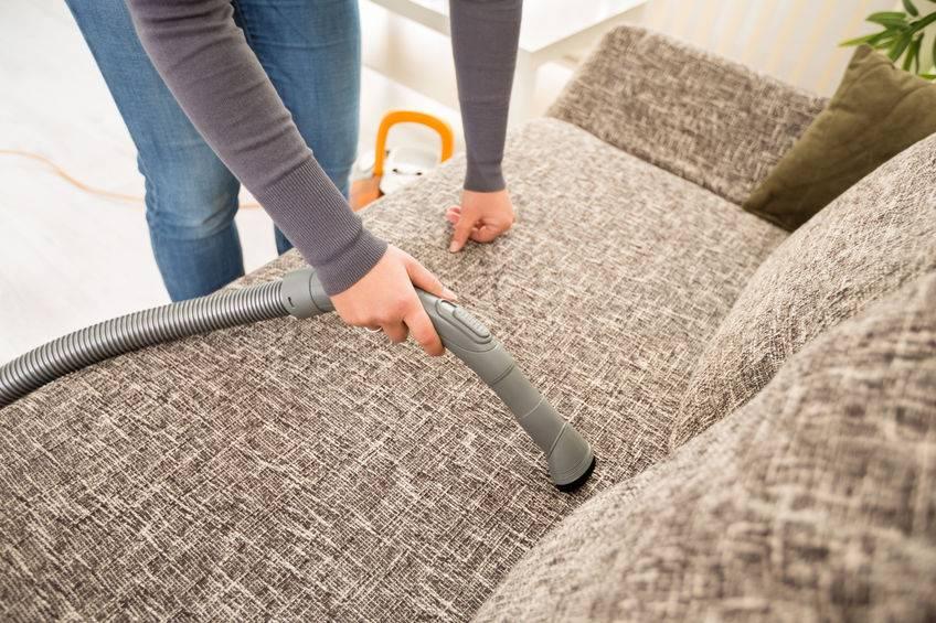 Как избавиться от запаха мочи на ковре (кошачьей, собачьей или детской) и вывести следы + фото и видео