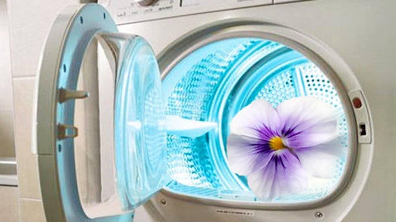 Как избавиться от тухлого запаха, плесени или сырости в стиральной машине