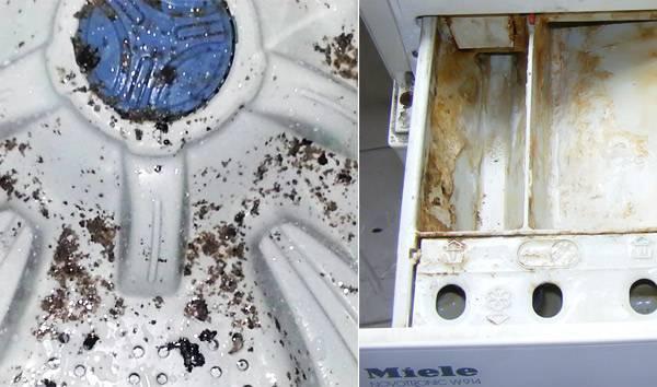 Как почистить стиральную машину от плесени внутри