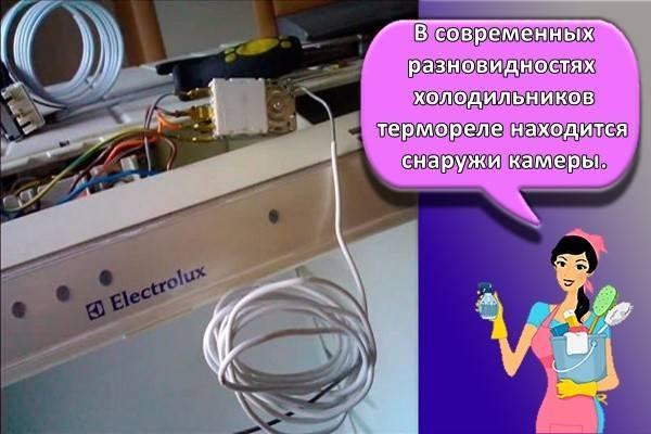 Можно ли отремонтировать терморегулятор холодильника. как проверить терморегулятор холодильника? схема холодильника и срочный ремонт