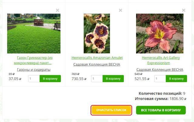 Растут на даче красочные клематисы второй группы обрезки — описание и фото популярных сортов