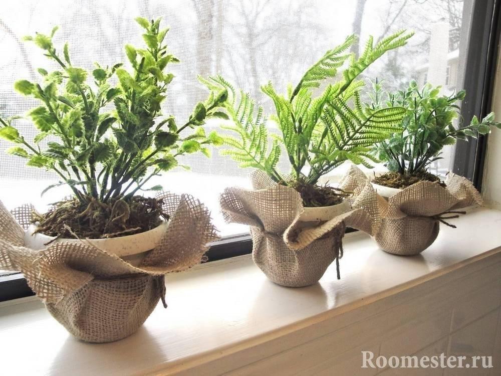 Оформление интерьера квартиры комнатными растениями