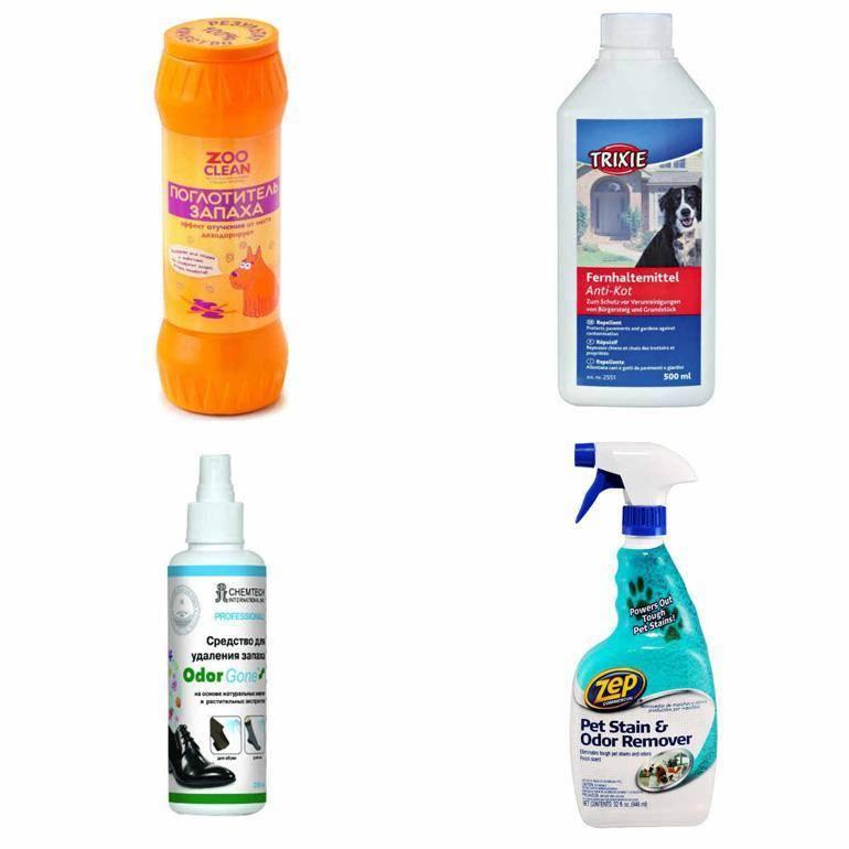 20 лучших средств, как избавиться и вывести запах кошачьей мочи на ковре