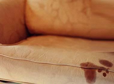 Топ 18 способов, как в домашних условиях убрать с дивана запах рвоты