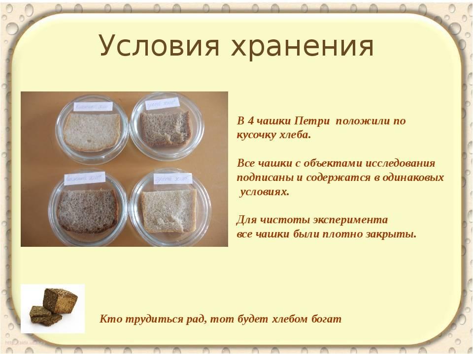 Как хранить прессованные дрожжи в домашних условиях: можно ли сохранить живой и пивной сырой продукт в холодильнике или морозилке и сколько хранятся после брожения