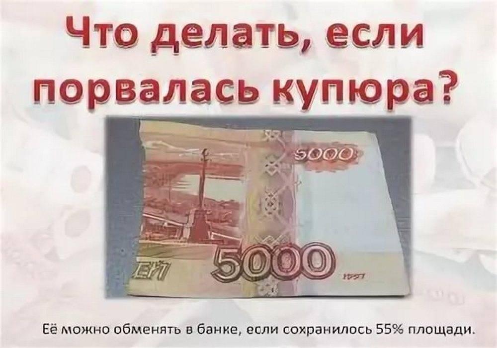 Что делать с порванными денежными купюрами