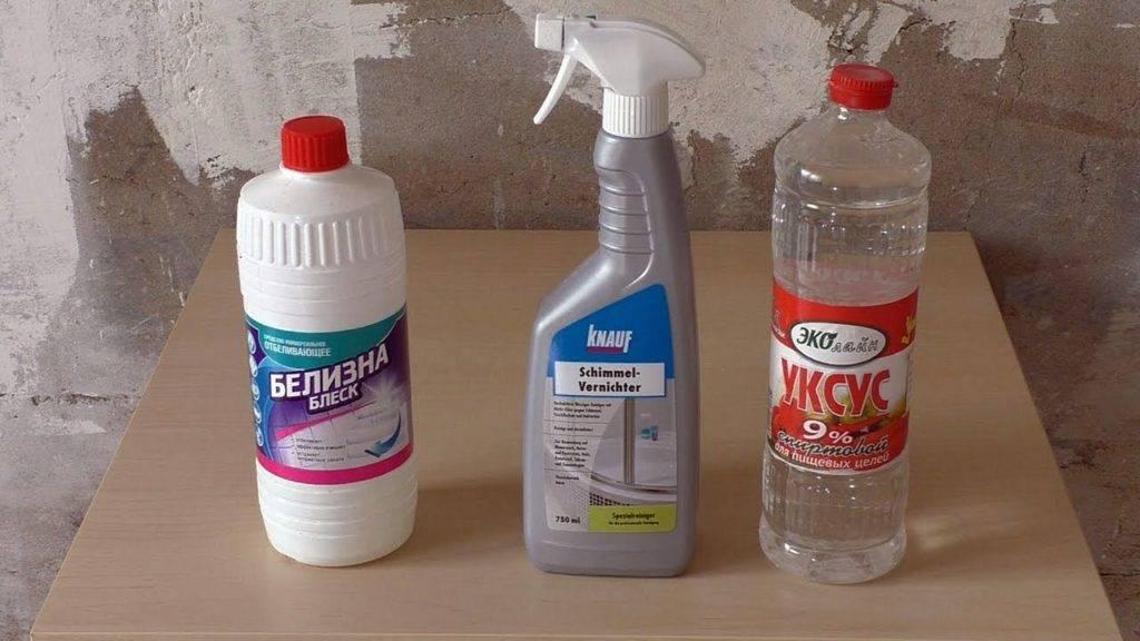 Запах плесени в квартире: как и чем с ним бороться