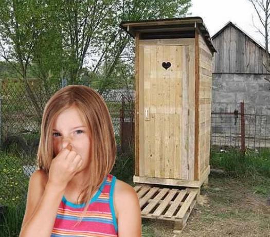 Лучшее средство для очистки дачных туалетов