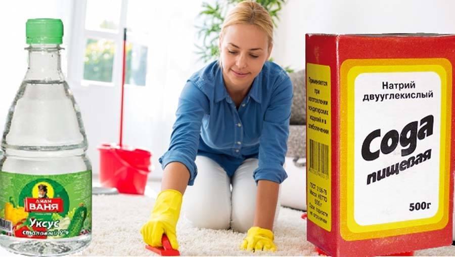 Как избавиться от пятен и запаха мочи на диване: эффективные способы очистки + фото и видео