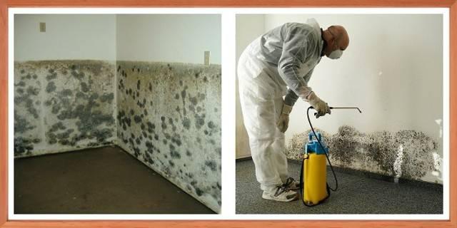 Лайфхак: как избавиться от запаха сырости в квартире