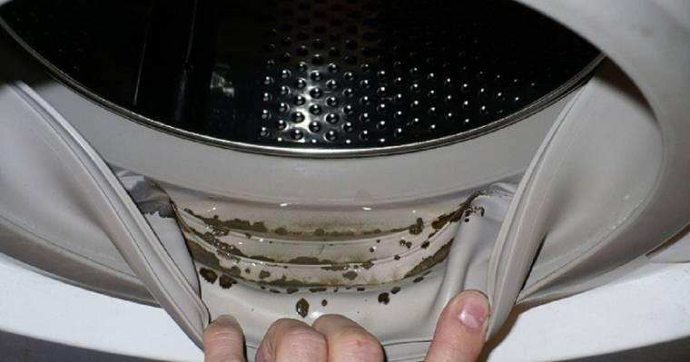 Плесень в стиральной машине: как вывести раз и навсегда?!