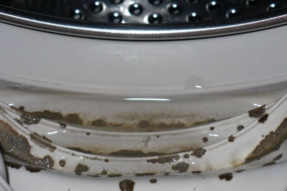 Как быстро очистить стиральную машину от плесени