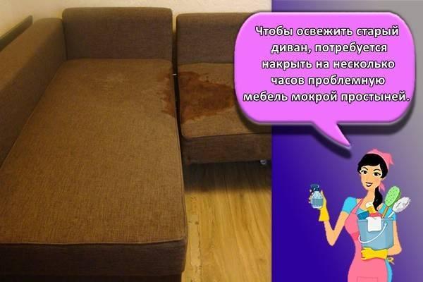 Как убрать запах мочи с дивана: простые домашние средства