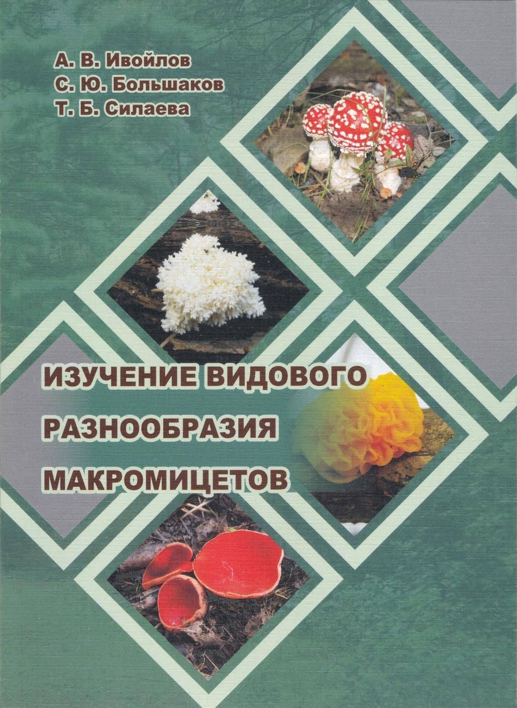 Кариоптерис кладонский – посадка и уход в открытом грунте