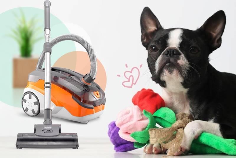 Пылесос для уборки шерсти домашних животных: критерии выбора