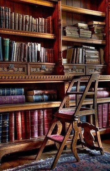 Чтобы было удобно пользоваться библиотекой, нужна специальная лестница.