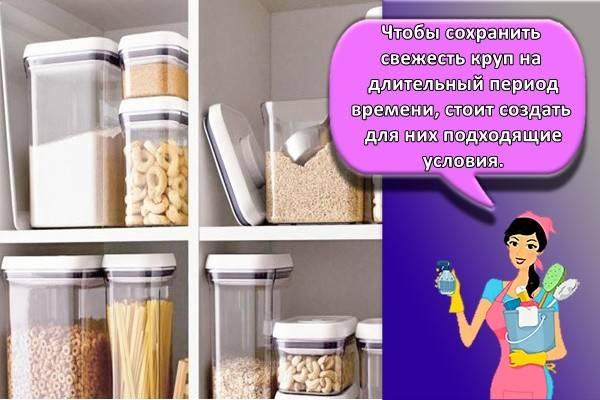 Как высушить сырые дрожжи в домашних условиях. как правильно хранить дрожжи в домашних условиях