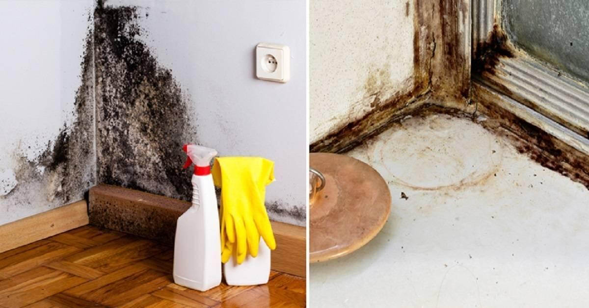 Как избавиться от запаха новой мебели и устранить специфический аромат из квартиры