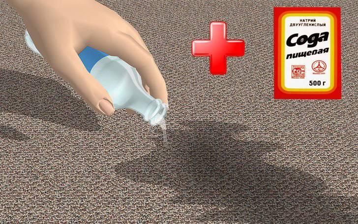 Как устранить неприятный запах собаки в квартире. запах собачьей мочи
