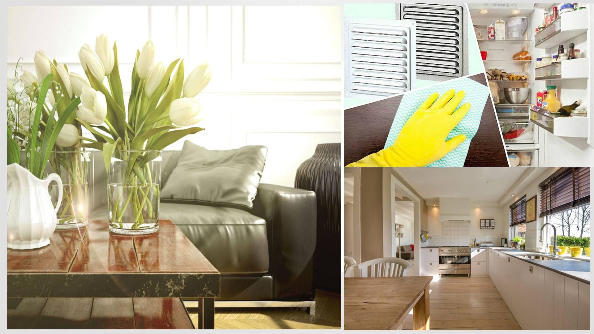 Избавление квартиры от неприятных запахов: как убрать затхлый запах, средства