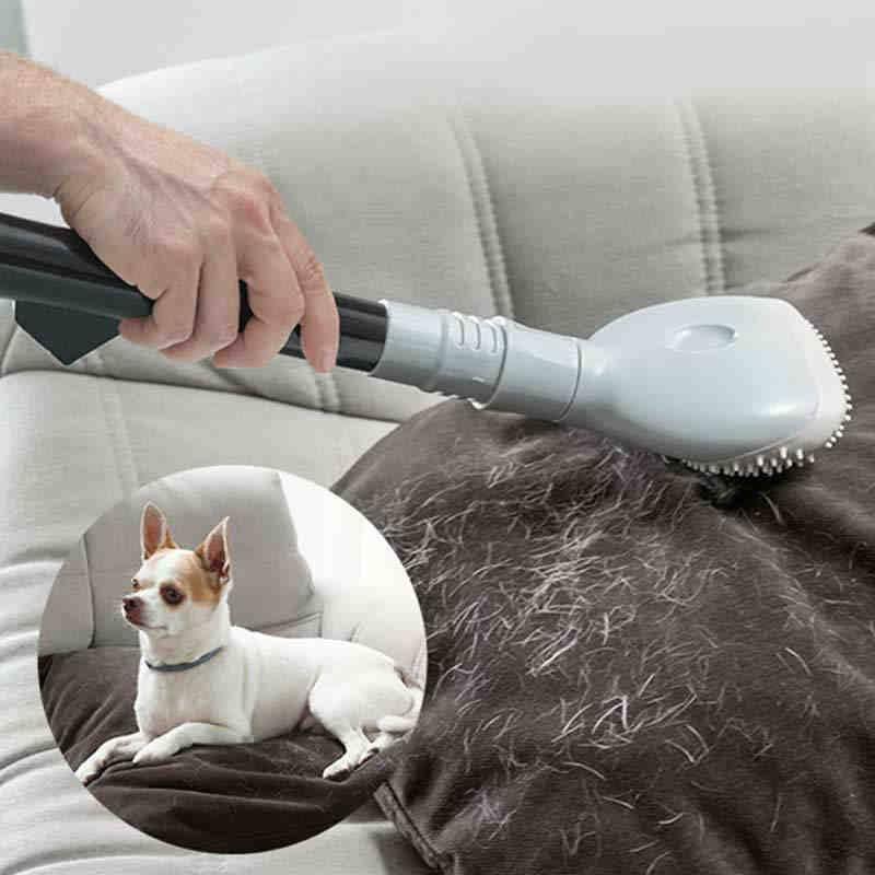 Какой пылесос лучше выбрать для уборки шерсти домашних животных