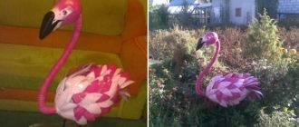 Фламинго дома и в саду