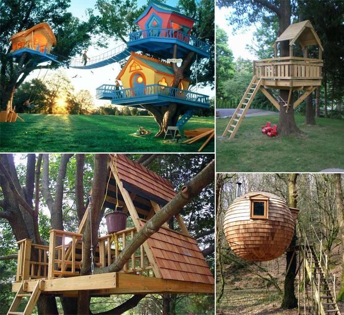 Идеи домика на дереве