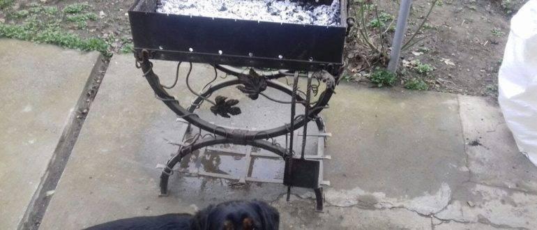 Мангал и собака