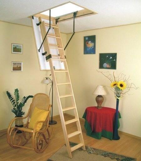 На фото лестница с телескопическим механизмом, при этом сама конструкция держится на газовых кронштейнах
