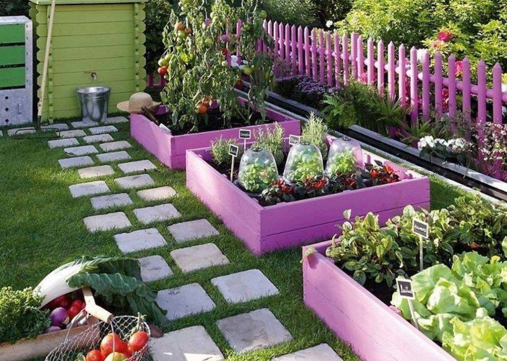 Розовый огород